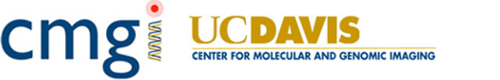 The Center for Molecular and Genomic Imaging